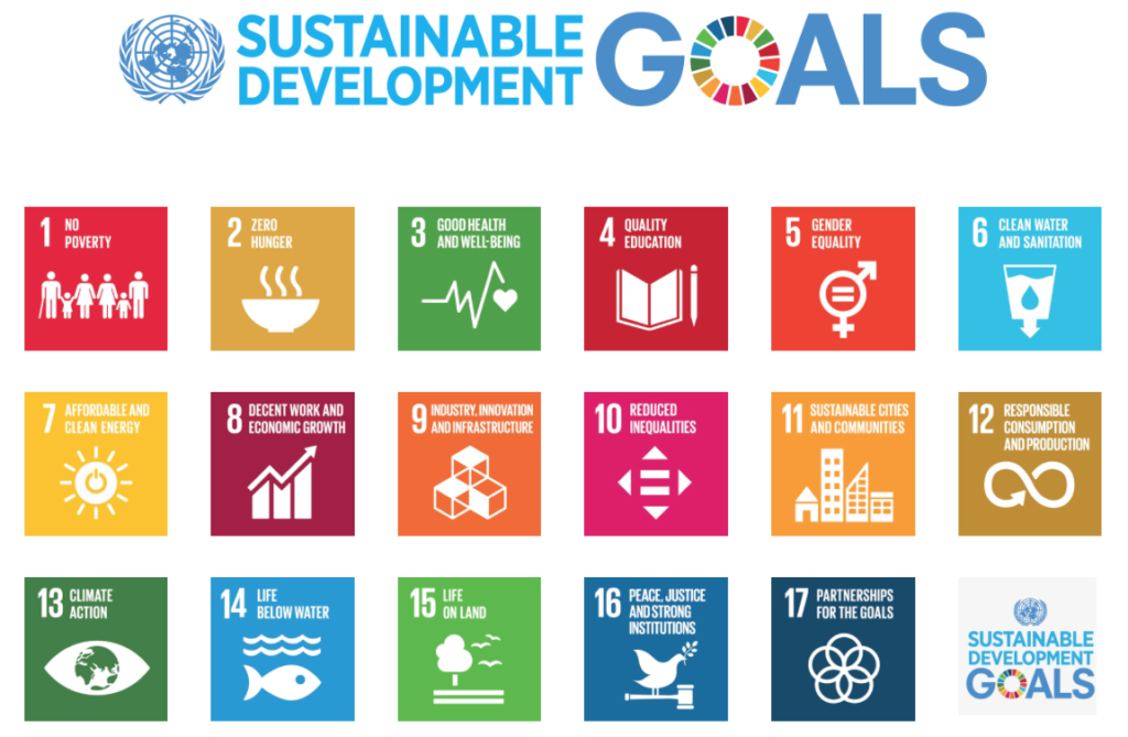 17 UN Sustainable Development Goals